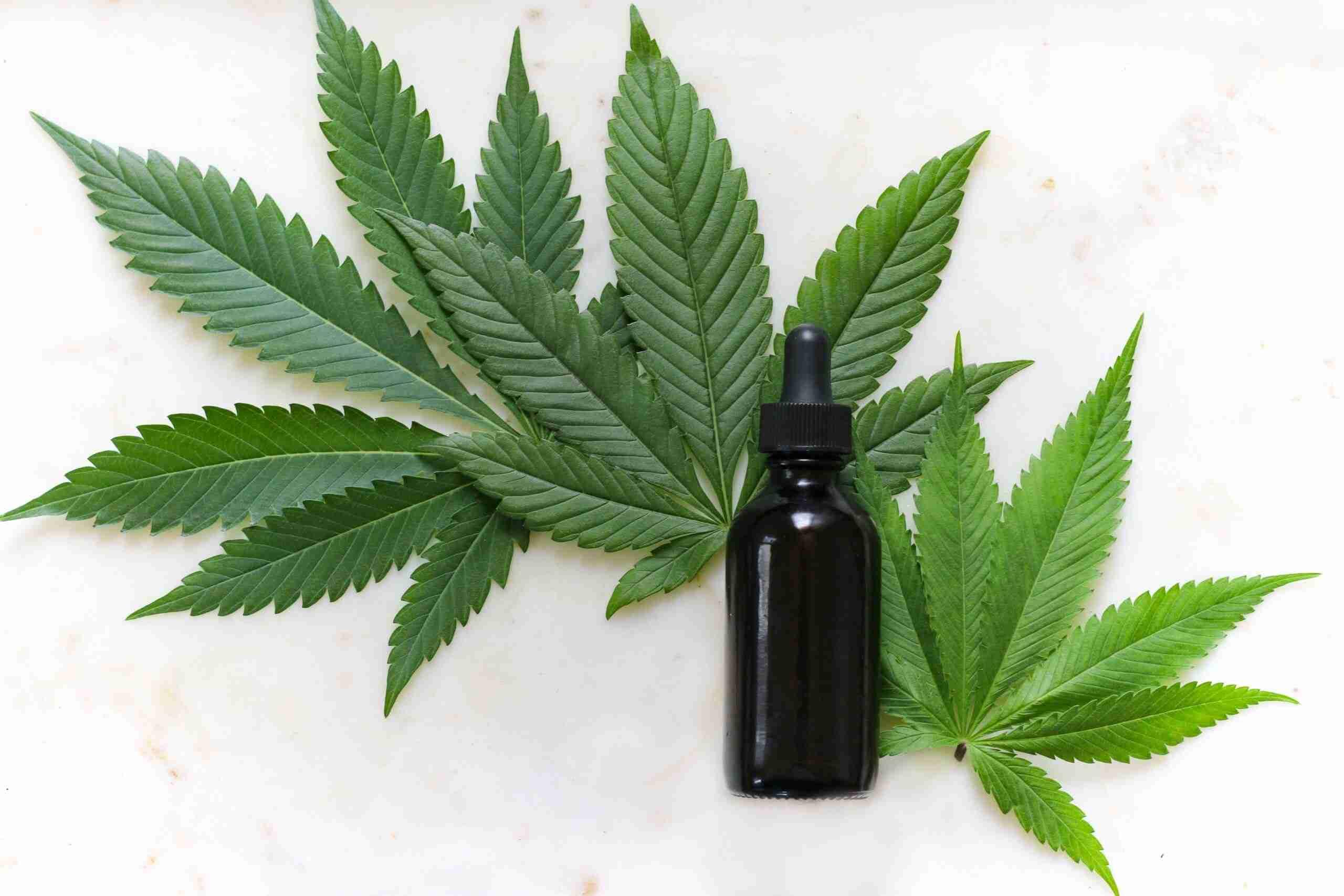 Medical Marijuana and Its Many Uses